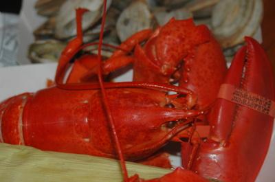 Robinson_wharf_lobster