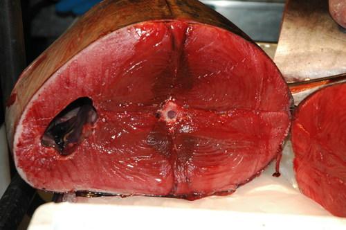 Tuna_at_fish_market_in_venice